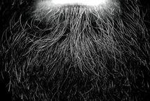 Beardbear
