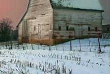 hivern fotos / by cristina plantalech