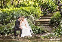 Lafayette Square Weddings