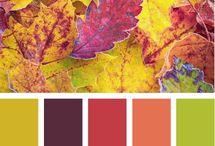 Autumn Colour / Autumn colour inspiration