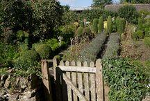 Grønnsak hage