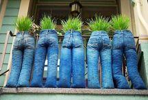 Unusual plant pot