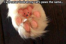 awww cute..