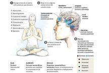 Beneficios del yoga y la meditación en nuestra salud / Todos aquellos estudios científicos que demuestran lo que el yoga y sus técnicas pueden hacer por nosotros.