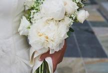 wedding / by Megan Rose