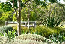 Wandering path garden