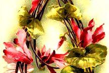 alfabeto com flores