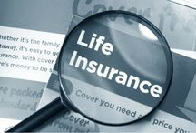 Insurance / all information about life insurance, health insurance, car insurance