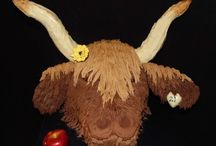 Highland Cow Cake / I was asked to create a 3D Highland cow cake for a friends 21st.  I am really happy with how it turned out and it was a fabulous addition to the medievil 21st where everyone was dressed in costumes!