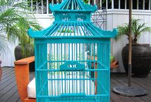 Birdcages / by Pati's Pin House