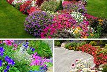 Blomster og have