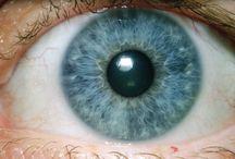 ögon textur referenser