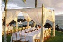 Canopy Wedding Reception
