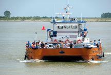 Danube Delta, Romania / Photos taken by David Stanley on a visit to the Danube Delta, Romania.