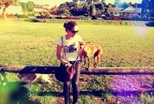 Doggies / by Adriana Valcarce Y-Guimaraes E-Costa