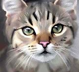 beaux chats