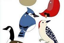 ptáci,ryby,