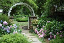 Schöner Garten / gardening