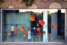 Window dressings/Store Fronts/Concept stores...