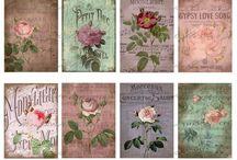 kwiaty papier