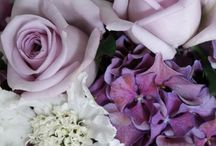 BOUQUETS/FLOWERS / Gorgeous! / by Sonia's Soiree