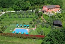 Villa Dany Ada / Country home rental situated in a lovely Lucca hilly side among vineyards and olive groves.