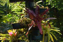 Jardim Vertical Espiral / Adaptada à calha da casa, reaproveita a água que é escoada do telhado para irrigação das plantas. Também pode ser utilizada como um pequeno jardim dentro de casa, com reservatório de água e irrigação automatizada.