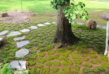 Gardening - Moss / Gardening with a Moss theme