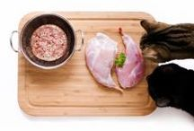 Raw by Bailey Blu / Raw by Bailey Blu believes in feeding species appropriate diets; and for carnivores, that means feeding a varied, balanced diet of good quality meat.
