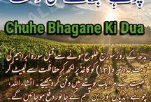 Chuhe Bhagane Ki Dua-Dua for Rats / Farm and Home Safety  Chuhe Bhagane Ki Dua-Dua for Rats