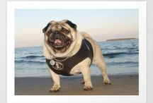 Gifts For Pug Lovers