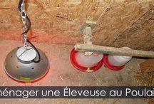 Incubation et éclosion des Oeufs de Poules en Incubateur Automatique / Comment réussir l'incubation des oeufs de poules dans une couveuse automatique. Guide étape par étapes détaillées avec instructions photos.