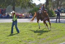 Florida Cracker Trail / by Kimberly Snider King