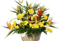 Bouquets exotiques / Des bouquets et compositions florales disponibles sur des fleurs pour tous / by Des Fleurs Pour Tous