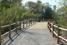 Santee California Parks / Santee CA has 10 neighborhood parks, along with Mission Trails and the Santee Lakes, providing space for seniors, children, and families including dogs to enjoy.