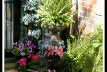 Fiori e piante / Come far bello il terrazzo