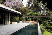 mid century /  palm springs