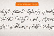 Fonts & Printables / by Jen Putnam