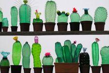 cactus di plastica
