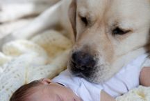Cute puppies with sweet babies :)