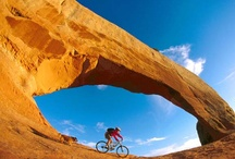 Calling All Hikers and Bikers: Fitness Destinations for Active Travelers / Vacationing is more than relaxing with a drink on a beach. Fitness-centered trips attract travelers who seek adrenaline-pumping adventure from their destination. These are great places to hike, camp, bike, climb and more. Find your action-packed adventure and tips here!