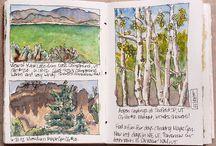 Sketch book / Carnet de coquis