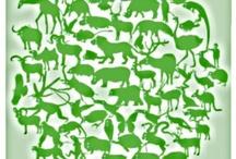 Hayvanlar / Animals