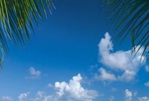 Life's a Beach / Islands, beaches, ocean and sand