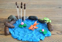 Unit Ideas: Habitats / Educational ideas for teaching kids about habitats. / by Katie @ Gift of Curiosity