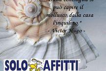 Solo Affitti Desio & Limbiate / link facebook