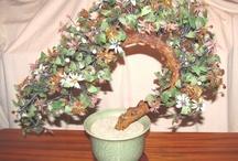 Ming Trees/Bonsai Trees