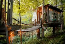 Tree House Heaven / by Joy McLawhon