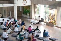 The Golden Jewels of Sri Aurobindo's Yoga talk / Category: Activity – A Talk by Ameeta Mehra Venue: Sri Aurobindo Ashram-Delhi branch Date: 15 August 2014