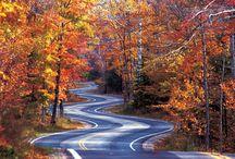 Driving Roads